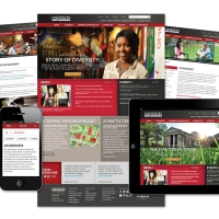 Redesigned Davidson Website pages